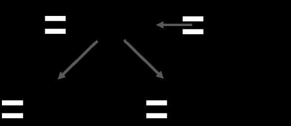 FE 基本情報に出やすいコンポーネント図