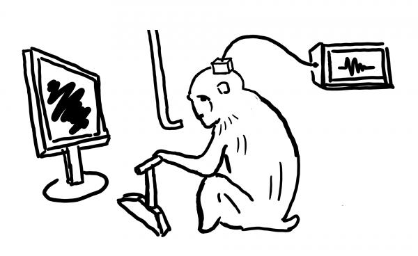 実験のスケッチ サル 電極 モニター 視覚野