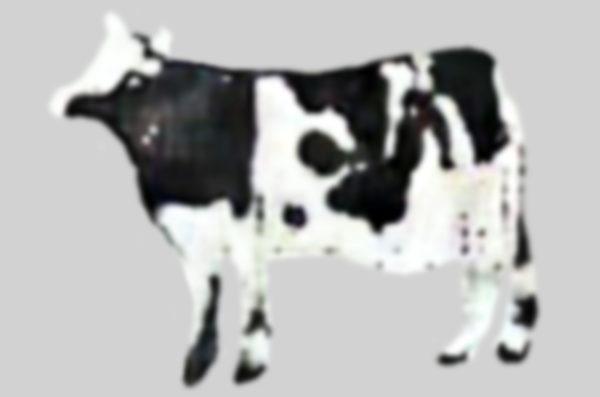 AI牛イラスト2021